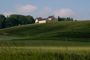 Weingut Apostelhoeve © Tourismus Limburg