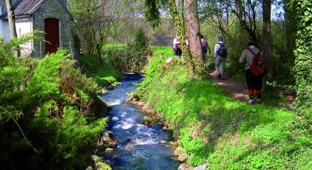 Wandern in Limburgs Hügelland