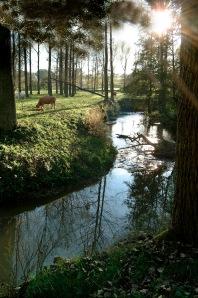 Hügelland bei Vaals © Tourismusbüro Limburg