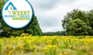Weert Grünste Region der Welt